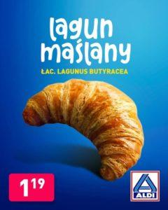 lagun-marketing